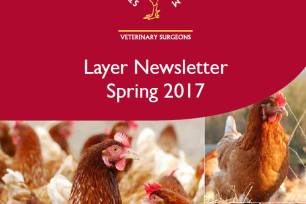 Our Spring Layer Newsletter is here!