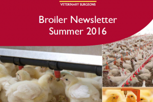 Our latest Broiler Newsletter has arrived!